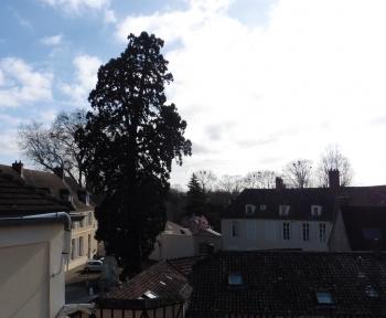Location Studio 1 pièces Montfort-l'Amaury (78490)